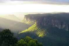 Take a day trip from Sydney to the Blue Mountains National Park. Go on a private Safari, or take a tour on the Explorer Bus. If you are in need of some TLC then a luxurious stay at the Wolgan Valley Resort & Spa is waiting. Jenolan Caves, Blue Mountains Australia, Private Safari, State Forest, Family Day, Day Trips, Places To See, Monument Valley, National Parks