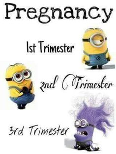 Pregnancy explained by minions Trimesters Of Pregnancy, Pregnancy Workout, Pregnancy Tips, Happy Pregnancy, Pregnancy Pictures, Funny Pregnancy Memes, 5 Weeks Pregnant, 3rd Trimester, Baby Quotes
