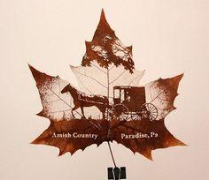 Невероятное искусство – картины на листьях деревьев. Резьба по листьям.