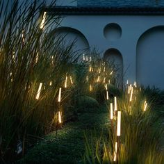 Landscape Lighting Effects . Landscape Lighting Effects . Outdoor Lighting Effects Using Spike Spotlights and Spike Backyard Lighting, Porch Lighting, Tree Lighting, Exterior Lighting, Outdoor Lighting, Garden Lighting Ground, Pathway Lighting, Lighting Ideas, Porch Light Timer