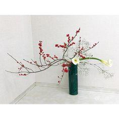 """広山流(こうざんりゅう) on Instagram: """"12/11(火) 本部家元教室  翠泉さんの作品 . #花 #いけばな #華道 #広山流 #和のお稽古 #花のある暮らし #梅擬 #ウメモドキ #海芋 #カラー #霞草 #カスミソウ  #flowers #ikebana #kozanschool…"""" Ikebana, Art Floral, Floral Design, Cylinder Vase, Japanese Flowers, Bonsai, Mini, Floral Arrangements, Graphic Art"""