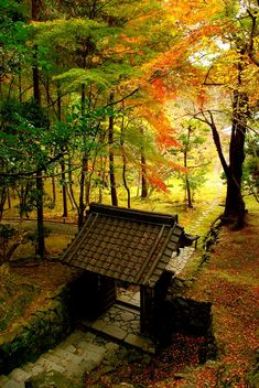 Saiho-ji temple, Kyoto in autumn