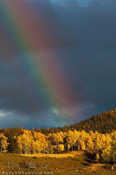 Autumn Aspen Trees - San Juan Mountains - #Durango #Colorado #Vacation #Rainbow #Fall #Adventure  http://www.pagosaspringsluxproperties.com