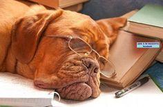 Hard day at school