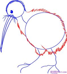 how to draw a kiwi bird step 3 Waitangi Day, Stone Painting, Rock Painting, Kiwi Bird, Online Drawing, Kiwiana, Bird Crafts, Bird Drawings, Cute Birds