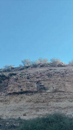 Orange cliff with green shrub 🦶🏽 Cliff, Shrubs, Orange, Beach, Water, Green, Outdoor, Gripe Water, Outdoors