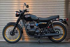 KAWASAKI W800 SPECIAL EDITION BLACK AND GOLD