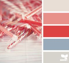 candied red --guest bedroom or basement moving-on-up-to-the-inner-harbor Design Seeds, Colour Pallette, Colour Schemes, Color Combinations, Christmas Palette, Color Harmony, Red Candy, World Of Color, Color Swatches