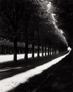 Michael Kenna, Pathway, Sceaux, France, 1998.