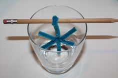 Sweet and Simple Things: Borax Crystals