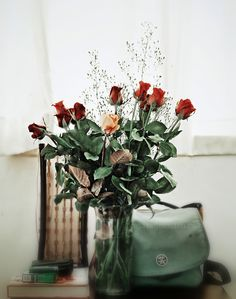 What are long-stemmed roses and where do they from?