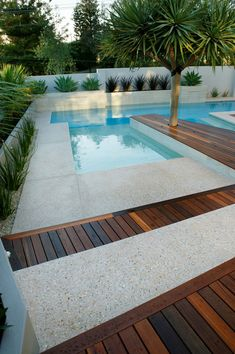 Having a pool sounds awesome especially if you are working with the best backyard pool landscaping ideas there is. How you design a proper backyard with a pool matters. Backyard Pool Landscaping, Backyard Pool Designs, Small Backyard Pools, Small Pools, Outdoor Pool, Landscaping Ideas, Small Inground Pool, Swimming Pools Backyard, Swimming Pool Designs