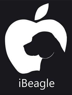 iBeagle #Beagle