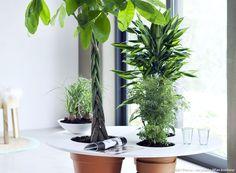 Trois DIY pour végétaliser son mobilier. Avec quelques plantes vertes, quelques planches en bois et un peu de bricolage astucieux, composez un décor végétal pour chaque pièce de la maison. Les plantes d'intérieur sont ici véritablement mises en scène.