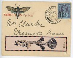 Mail Faux original.  Papillon de nuit séduction.  par BANTOCKart, $450.00