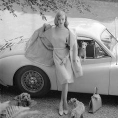 Nena Von Schlebrugge [Uma Thurman's mum] Vogue, 1958 by Norman Parkinson Uma Thurman, Norman, Italian Greyhound, Black White, Retro Mode, Moda Vintage, Vintage Fashion Photography, Vintage Glamour, Vintage Vogue