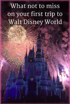Walt Disney World | First trip to Walt Disney World