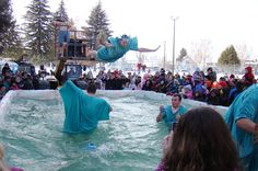 Employees of Liberty Tax Service dive into frigid waters during the Polar Bear Swim at Rexburg's Snowfest on Saturday, Jan. 30 2010.