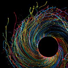 Painting centrifuged Fabian Oefner