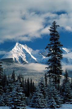 log cabin view, alaska, settle alaska