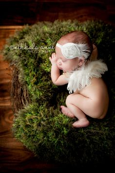 nikkalaannephotography.com newborn baby photo session with angel wings and nest