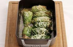 Cannellonis van groene kool met varkensgehakt
