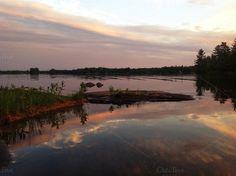 Sunset on the lake on Creative Market