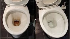 The toilet bowl will clog and scale very quickly. Commercial cleaning products, such as Harpic, are expensive and are particularly expensive.