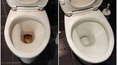 La cuvette des toilettess'encrasseet s'entartretrès rapidement.Les produits décapants du commerce, commeHarpic, coûtent cher et sont particulièrement