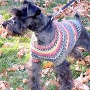 Great website with lots of free dog sweater patterns