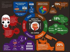 La realidad sobre el consumo de carne
