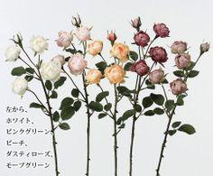 この花いいかも
