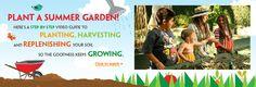 Teaching Gardens - Plant a summer garden