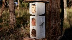Interesting ways to make a bee house.