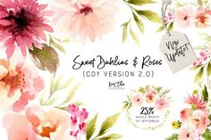 Sweet Dahlias and Roses by Kim Thoa Designs on @creativemarket