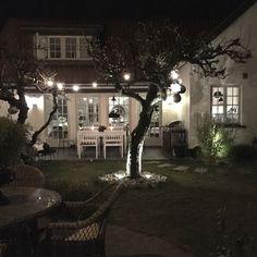 Vår trädgård by night (via Bloglovin.com )