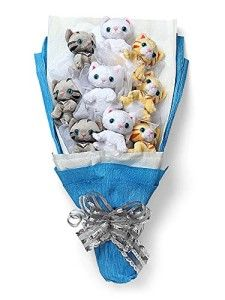 Give the gift of kittens this Valentine's Day with a Plush Kitten Bouquet. Everyone loves kittens. You get a bouquet of 9 plush kittens in a Cat Lover Gifts, Cat Gifts, Cat Lovers, F22, Crazy Cat Lady, Crazy Cats, Valentine Day Gifts, Valentines, Valentine Bouquet