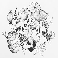 Botanical vibes #illustrator #illustration #design #sketch #drawing #draw #ink #tattoo #tattoodesign #linework #dotwork #blackwork #blackworkers #blackandwhite #botanical #flowers #monstera #leaves #gingko #art #artwork #artist #artistic #instaart #minimal #fineliner #evasvartur #instafollow