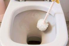 Deja tu inodoro impecable en tan solo 10 segundos, increíble pero cierto... ~ ♥✿♥DILO CON IMÁGENES♥✿♥