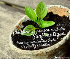 Nachzulesen auf BibleServer | Matthäus 5,5