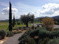 #Maremma #Toscana #Orbetello #Tuscany #TuscanyMaremma #MaremmaToscana #Tuscanyseaside