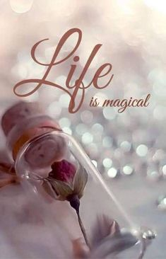Life is Magical ~~❤~~ Have a Magical Weekend :) xoxo Flower Phone Wallpaper, Cute Wallpaper Backgrounds, Love Wallpaper, Galaxy Wallpaper, Disney Wallpaper, Wallpaper Quotes, Beautiful Flowers Wallpapers, Beautiful Nature Wallpaper, Pretty Wallpapers