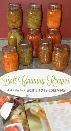 Canned Tomato Recipes, Salsa Canning Recipes, Pressure Canning Recipes, Canning Pressure Cooker, Canning Salsa, Canning Pickles, Relish Recipes, Canning Tips, Pressure Cooking
