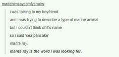 Sea pancake