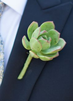 Grooms Succulent Boutonniere // Photo: Braedon Flynn Photography // Feature: The Knot