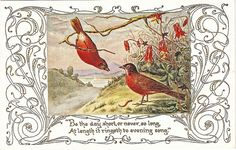 vintage postcard - nice reds