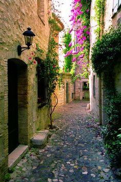 D'ombre et de lumière, de fleurs et de pierres, de pourpre et de vert. Saint Paul de Vence, Provence, France