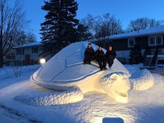 Three brothers from Minnesota are known for making impressive snow sculptures each winter in their New Brighton front yard – this year, they decided to make a sea turtle.