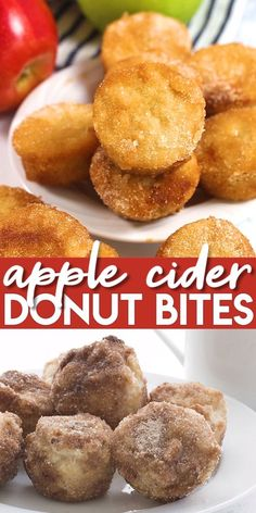 Keto Apple Cider Donut Bites Such a fun little treat! These low carb and sugar free mini muffins taste just like apple cider donuts. Healthy and grain-free, they make the perfect breakfast or snack. Keto Foods, Keto Snacks, Healthy Apple Snacks, Candida Diet Recipes Snacks, Gluten Free Snacks, Healthy Meals, Healthy Eating, Keto Diet Breakfast, Breakfast Recipes