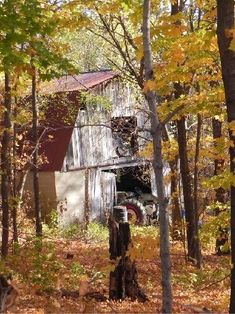 A hidden treasure in the undergrowth. an old Barn and an old John Deere tractor peeking out. Country Barns, Country Life, Country Living, Country Style, Country Roads, Farm Barn, Old Farm, Barns Sheds, Old Tractors